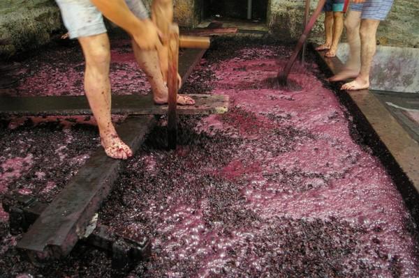 Традиционное давление винограда ногами