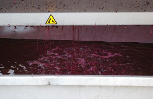 Отжим винограда в пневмо прессе
